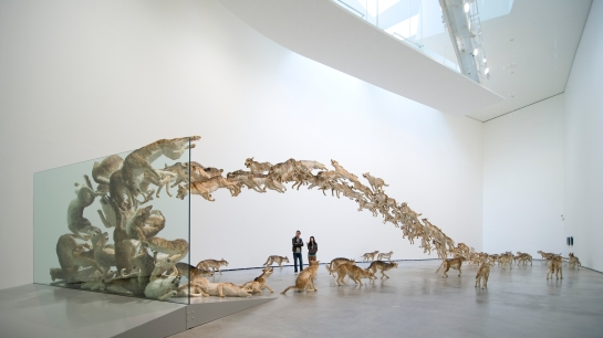 01-cai-guo-qiang-head-on-1