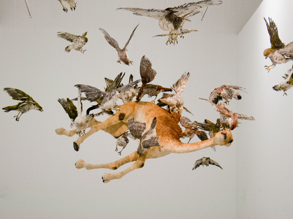 mathaf-arab-museum-of-modern-art-cai-guo-qiang-saraab-n-flying-together-life-like-falcons-with-camel
